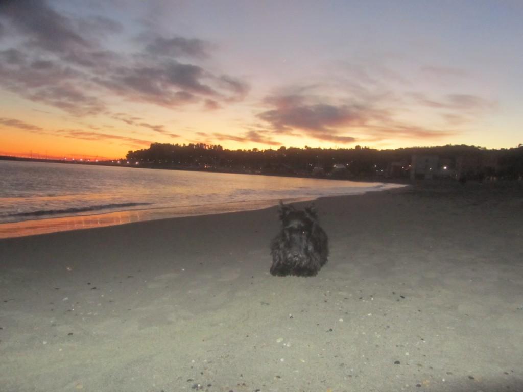 Macadam & Scenic Views, November  & December 2011