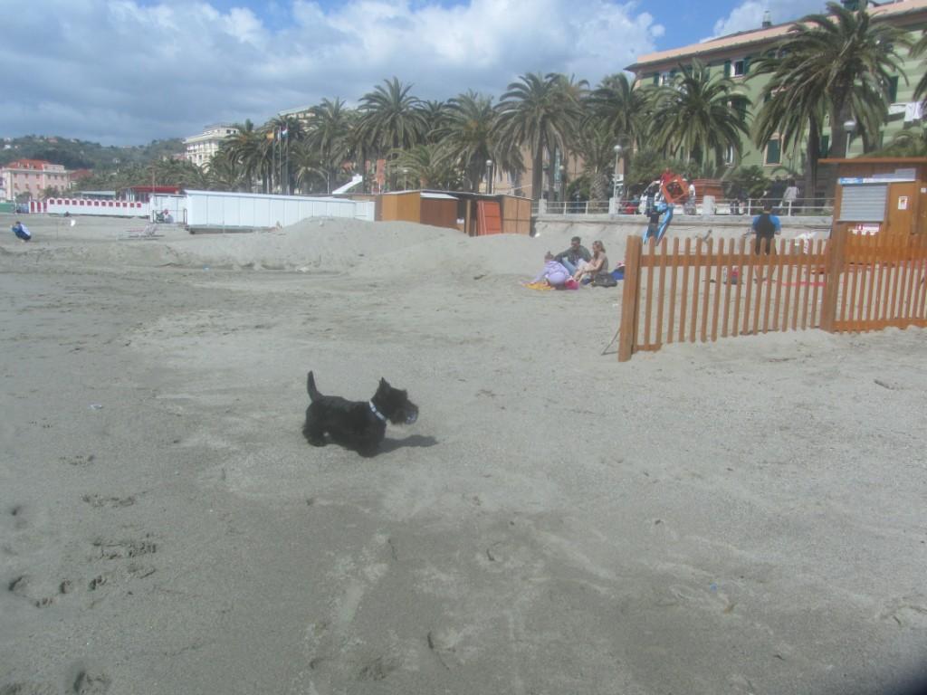 Macadam and Beaches in April